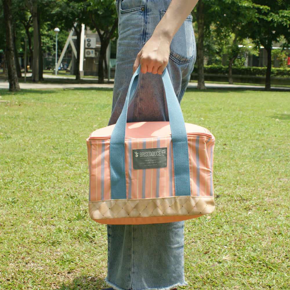 DESTINO STYLE|日本B/D直條紋折疊野餐袋