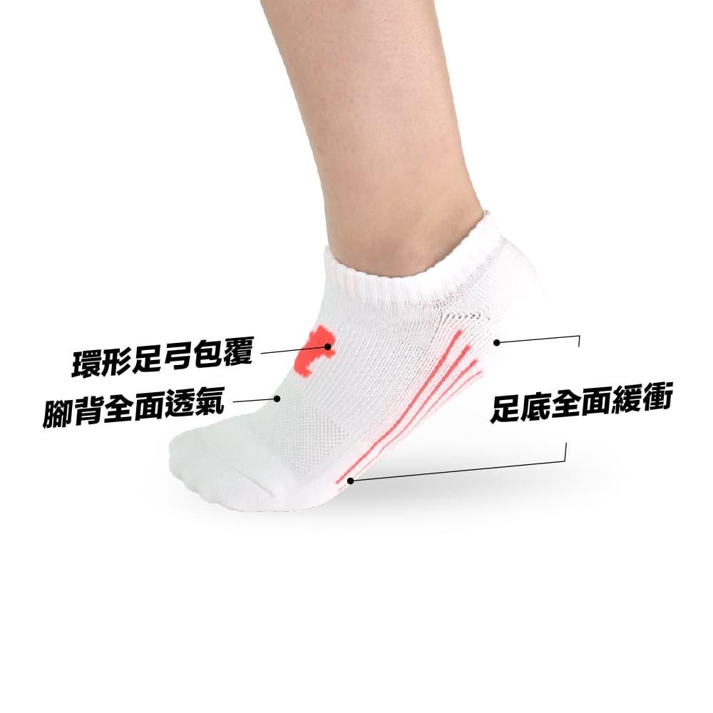 titan 太肯 舒壓生活踝襪 白桃(5雙)