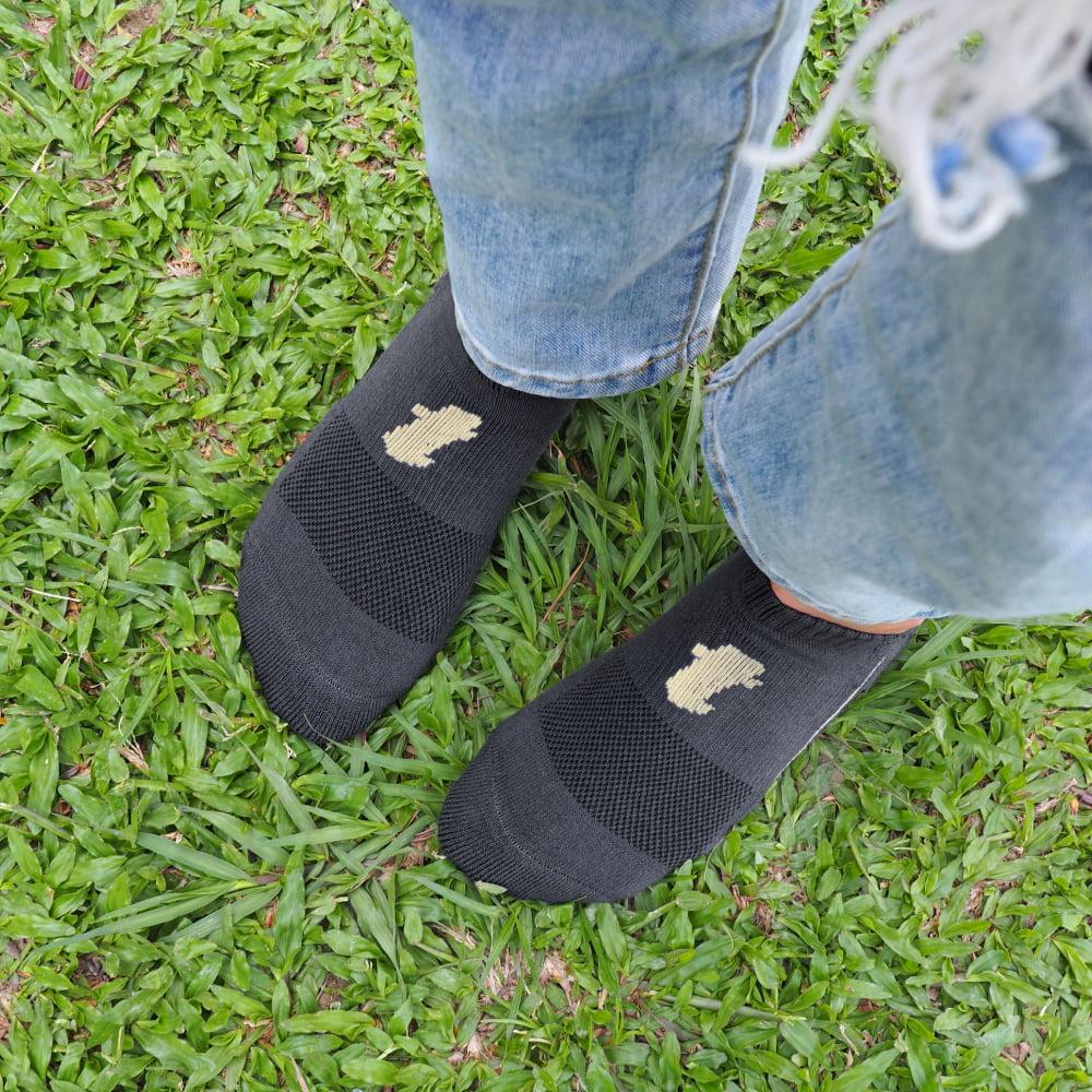 titan 太肯|舒壓生活踝襪 深灰(5雙)