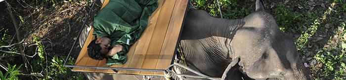 奧地利 COCOON|戶外露營防蚊!! 超輕量快乾COOLMAX防蚊蟲旅行四季毯-海洋藍