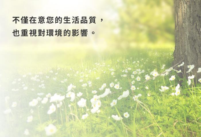 安閣家|巧拼貓屋-躲貓貓櫃 (清新白)