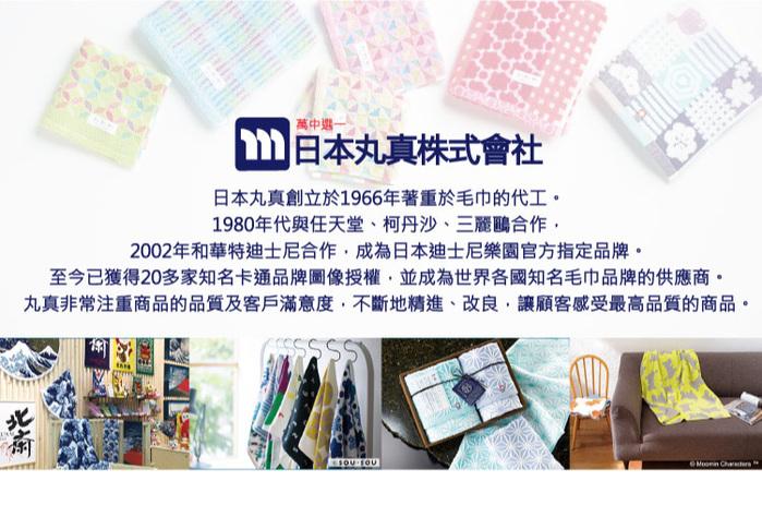 (複製)日本丸真 Moomin方型毛巾布收納袋