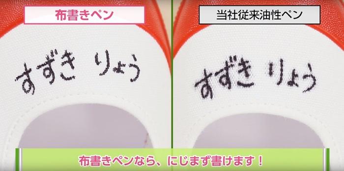 日本PILOT|百樂抗暈布彩繪筆布筆油性麥克筆(MNN-12系列)