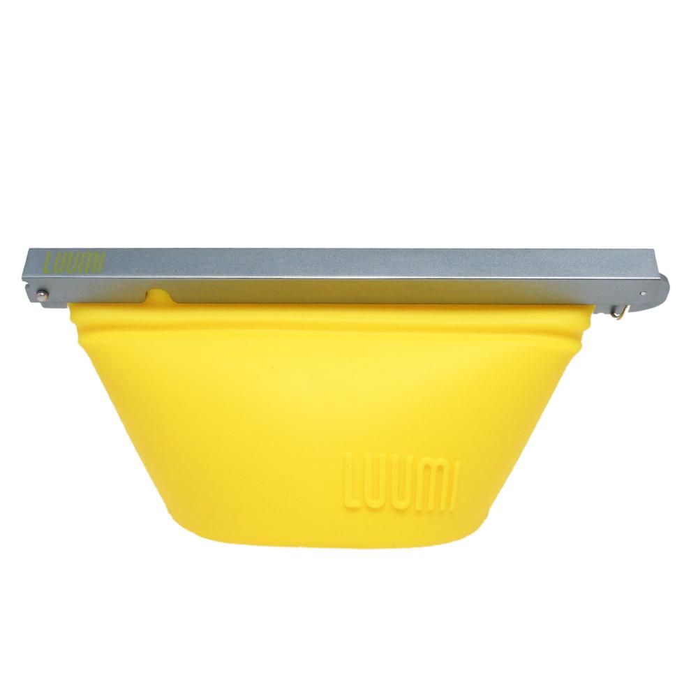 LUUMI|SMALL BOWL 小食帶 黃