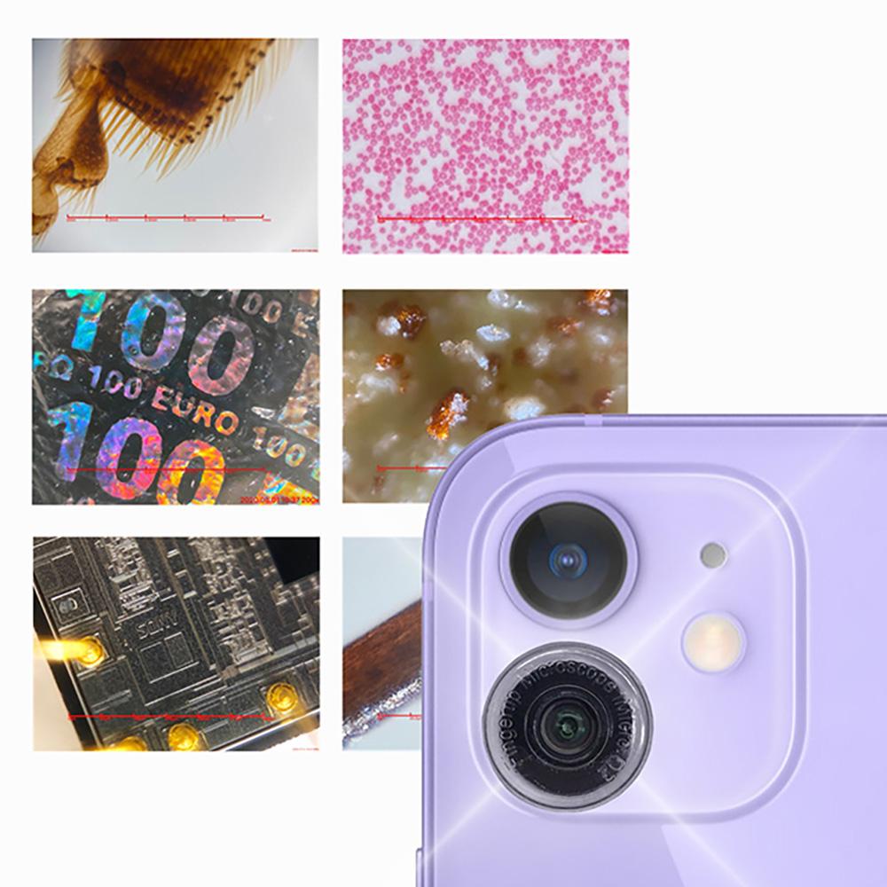 i-seeing|iMicroQ2 手機顯微鏡-含尺規版