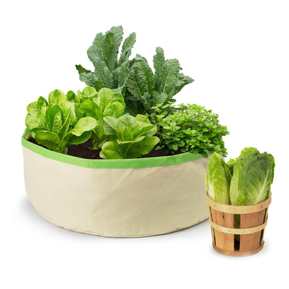 Architec| HGG 收割吧!栽種袋 (花草蔬菜)-淺亞麻/蘋果綠