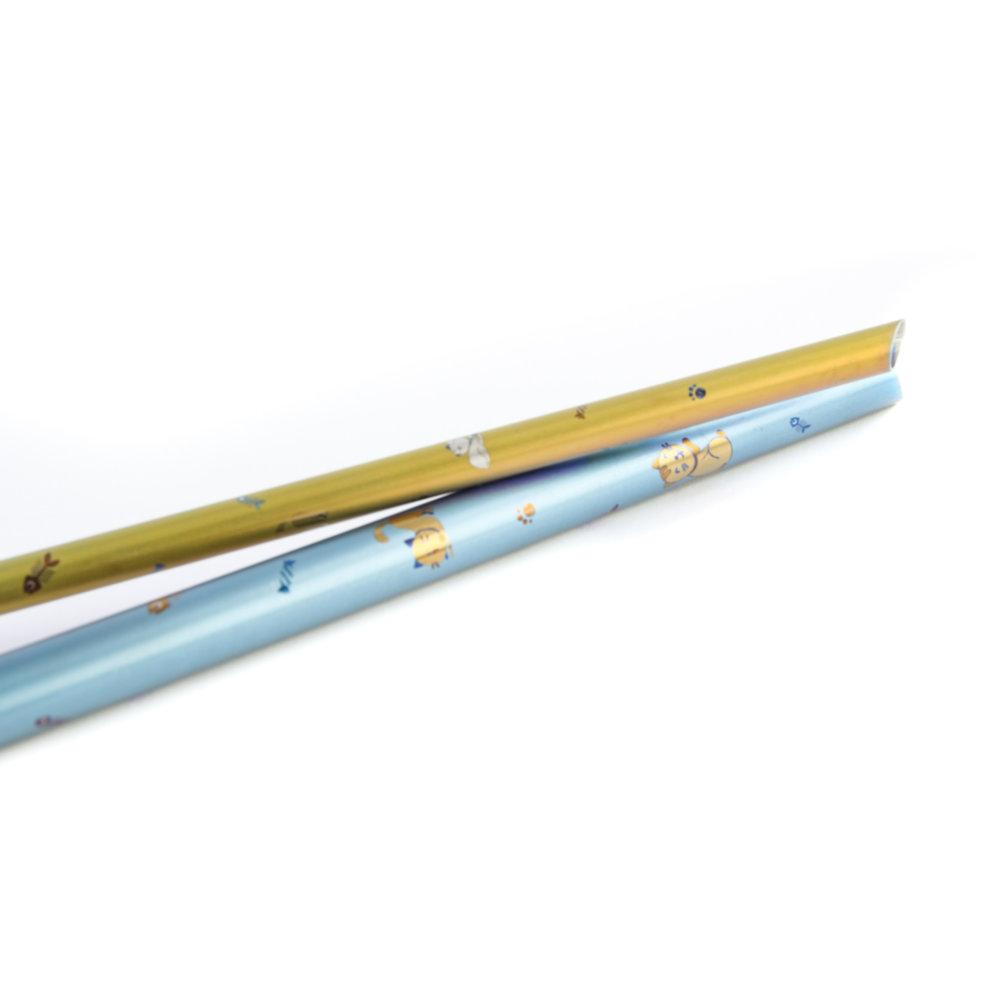 TiANN鈦安|鈦吸管 純鈦 斜口吸管 粗+細套組 俏皮貓愛地球 (8+12mm)