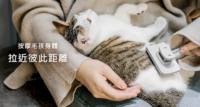 奧本 URABNER|貓用除廢毛伸縮針梳(貓狗適用) CT-31