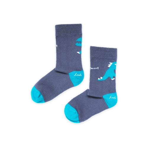 Leeds weather|FUN.童襪、Kids Socks.台灣製造(Roar!、 恐龍來了! )