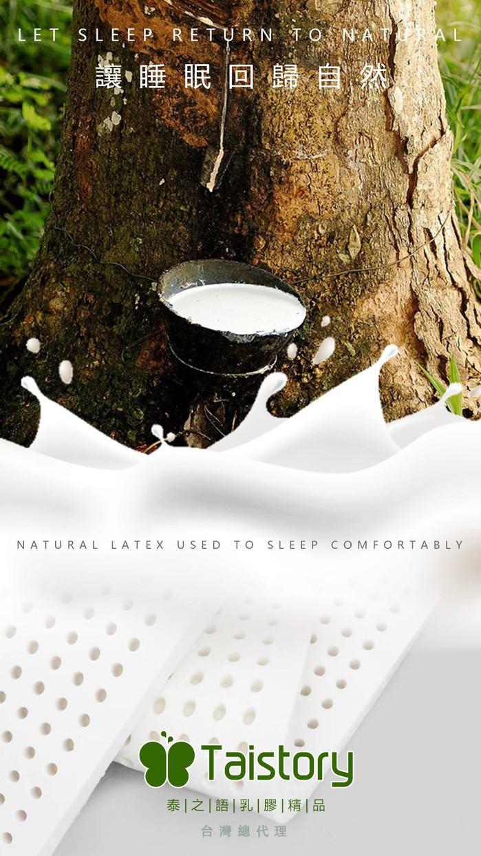 泰之語 Taistory|Natural Latex Pillow 4~6歲 小兒童乳膠枕-TS010