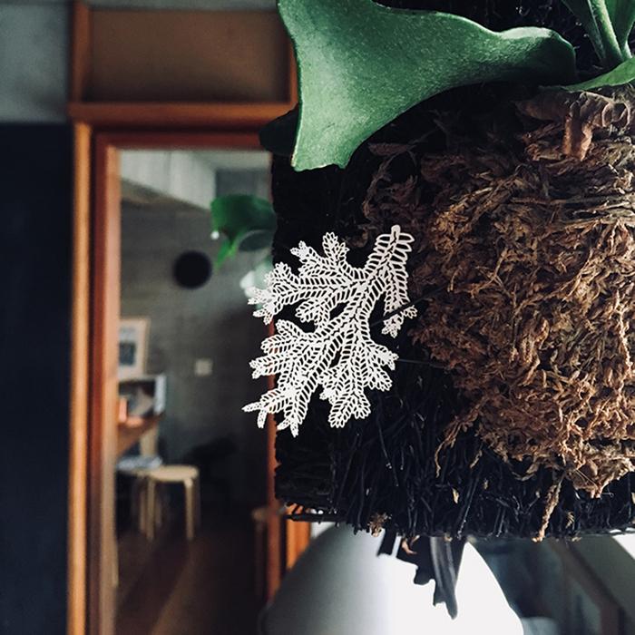 (複製)FERN ONLY|蕨類標本紙雕-玉山地刷子