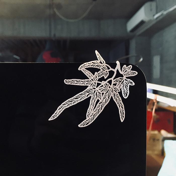 FERN ONLY|蕨類標本紙雕-海金沙