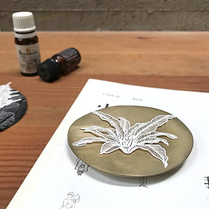 (複製)FERN ONLY|蕨類標本紙雕-臺灣金狗毛蕨