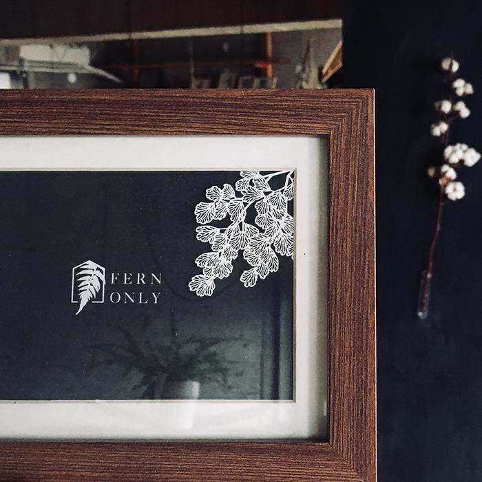 (複製)FERN ONLY|蕨類標本紙雕-兔腳蕨