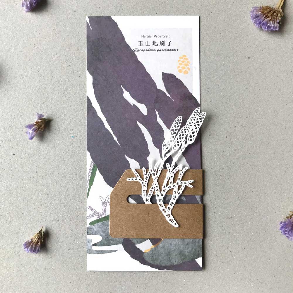 FERN ONLY|蕨類標本紙雕-玉山地刷子