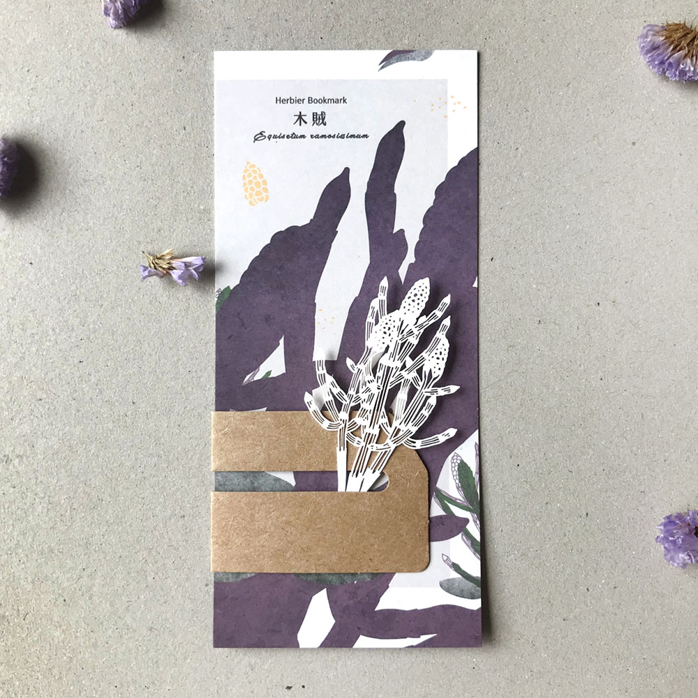 FERN ONLY|蕨類標本紙雕-木賊
