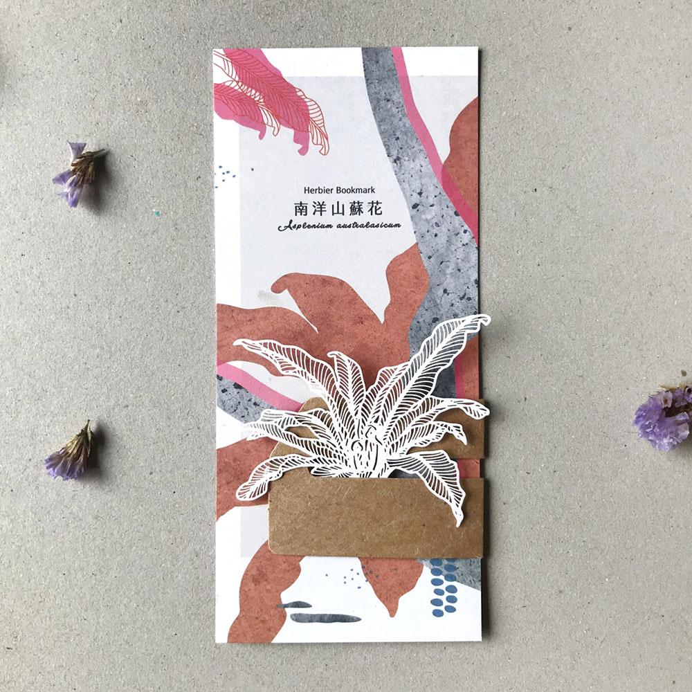 FERN ONLY|蕨類標本紙雕-南洋山蘇花