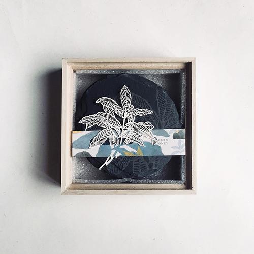 FERN ONLY|蕨類化石石皿-臺灣原始觀音座蓮