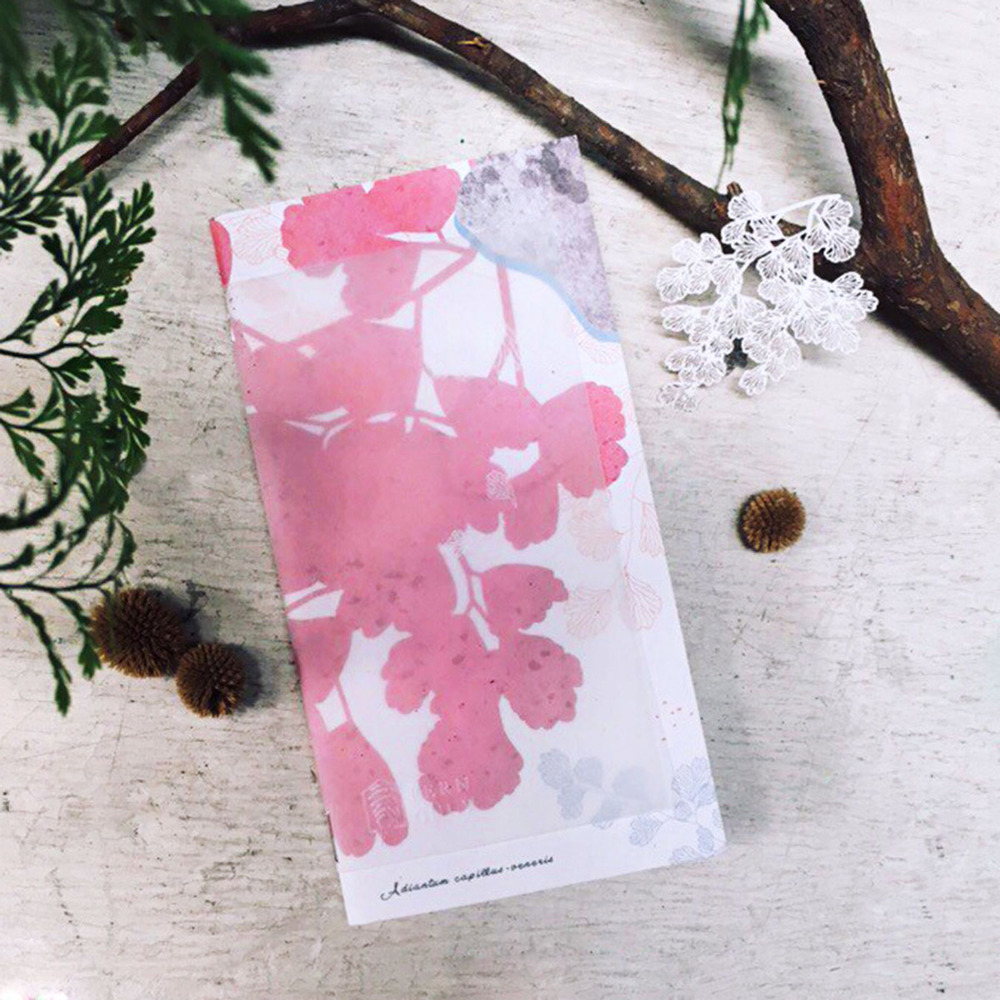 FERN ONLY|蕨美筆記本-鐵線蕨