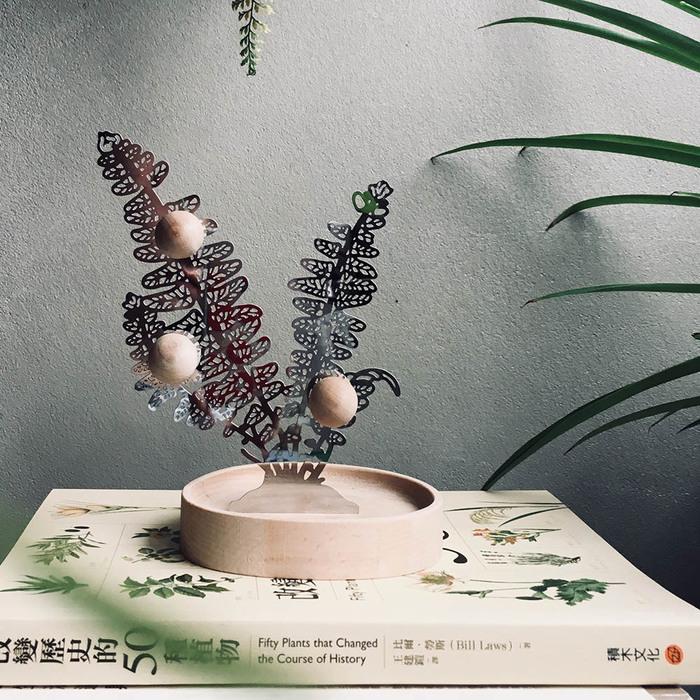 (複製)FERN ONLY|蕨對置物掛架-鐵線蕨