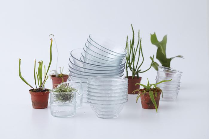 (複製)Duralex|法國強化玻璃杯Lola(200ml / 6入組 / 透明)