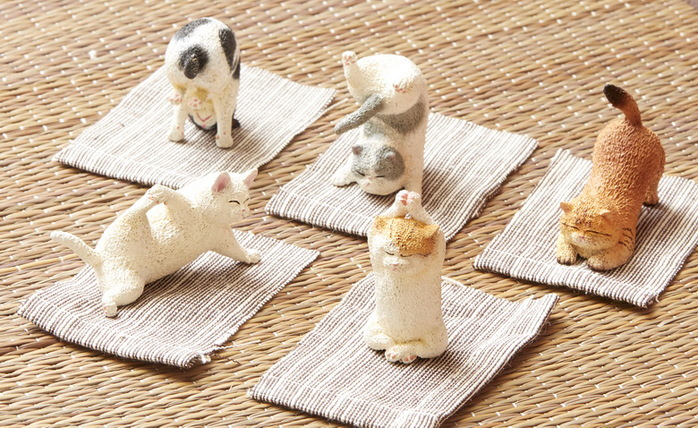 Animal Life|貓瑜珈寶寶(盒裝版/6入)