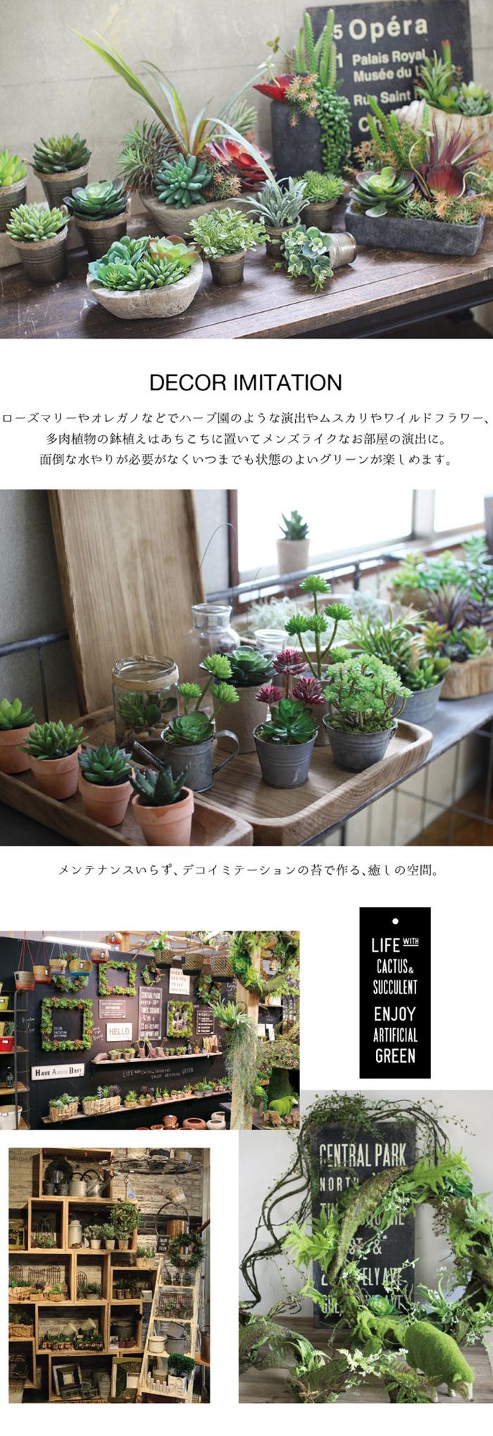 (複製)SPICE|日本超仿真人造香草盆栽擺飾 -迷迭香