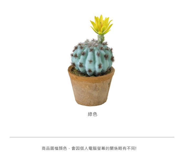 (複製)SPICE 日本超仿真人造香草盆栽擺飾 -芹菜