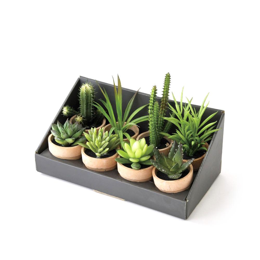 SPICE|日本超仿真人造 紙盆栽人造綠色植物 -多肉植物/ 仙人掌(8種組)