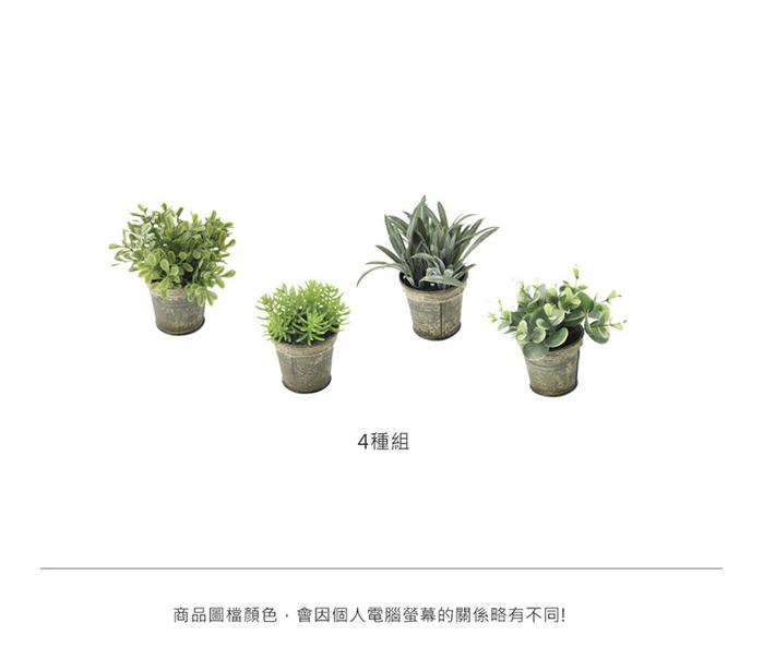 (複製)SPICE|日本超仿真人造 紙盆栽人造綠色植物 -多肉植物/ 仙人掌(8種組)