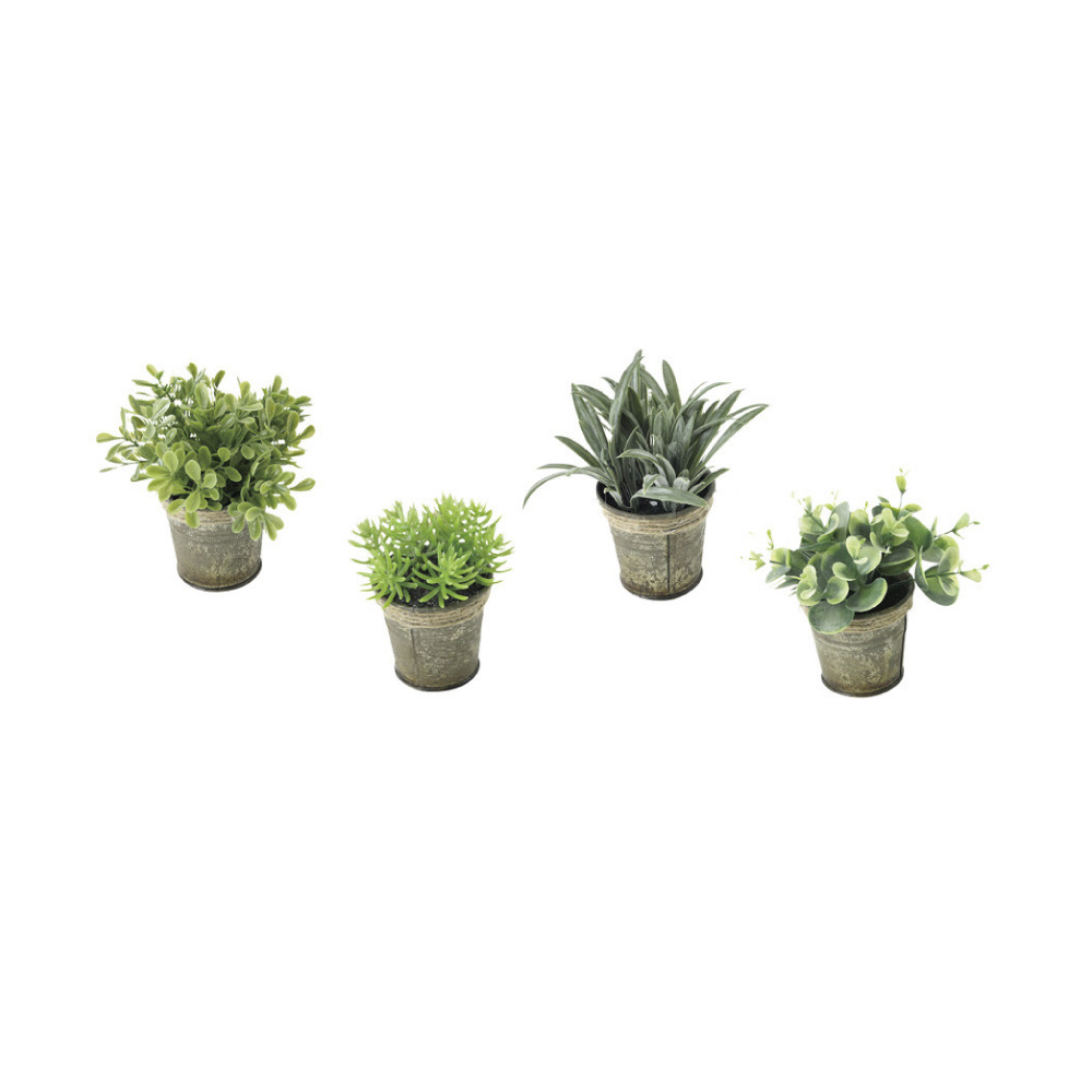 SPICE|日本超仿真人造 仿舊白鐵皮盆栽綠色植物-觀葉植物(4種組)