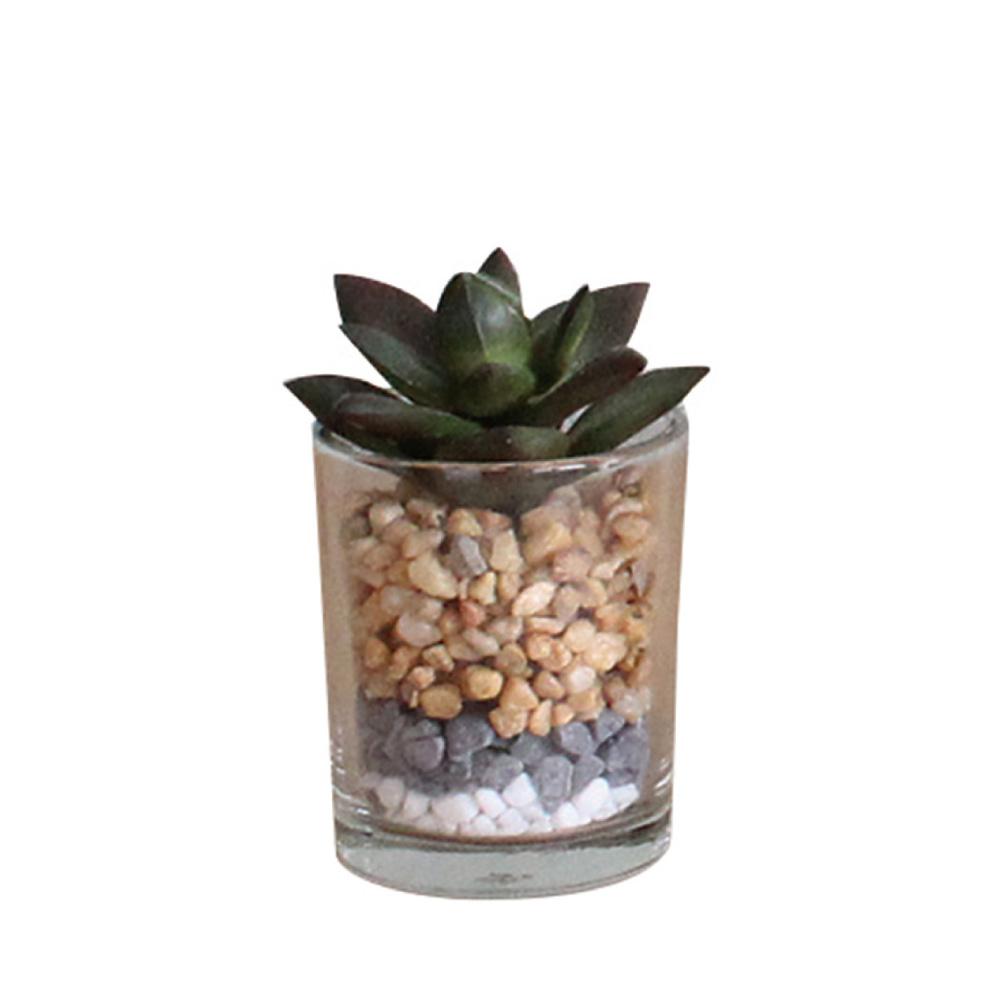 SPICE|日本超仿真 人造綠色植物 -多肉植物(玻璃盆栽C)