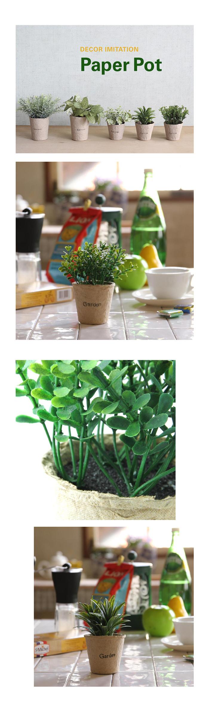 (複製)(複製)SPICE 日本超仿真 人造綠色植物 -多肉植物(玻璃盆栽D)