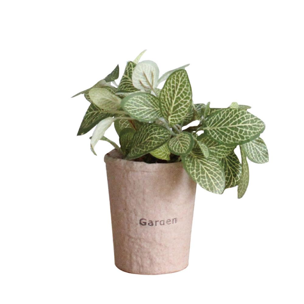 SPICE|日本超仿真 人造綠色植物 -觀葉植物(網紋草)