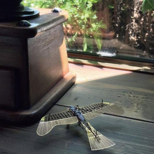 Aerobase 金屬模型Etrich Taube軍用鴿式單翼飛機黃銅材質模型(1/160)