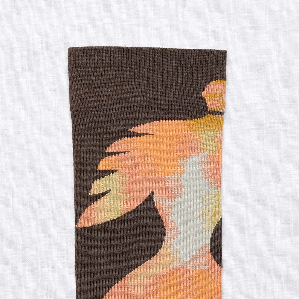 Bonne Maison|天使之翼 純棉織襪