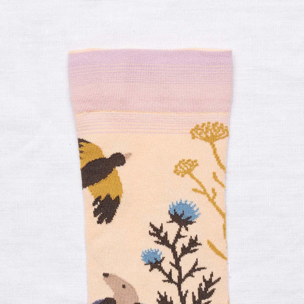 Bonne Maison|黃昏織戀 純棉織襪