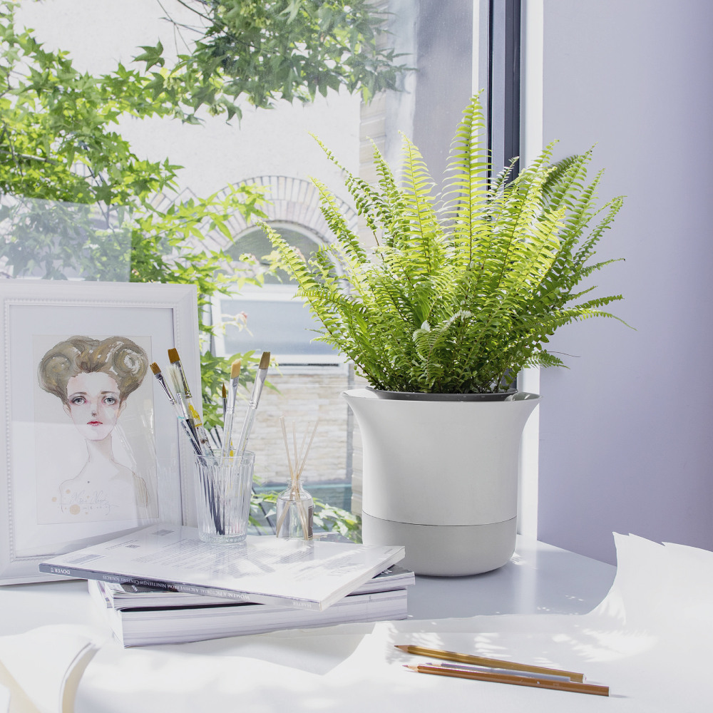 Wazai|哇栽藍牙智慧植物盆栽