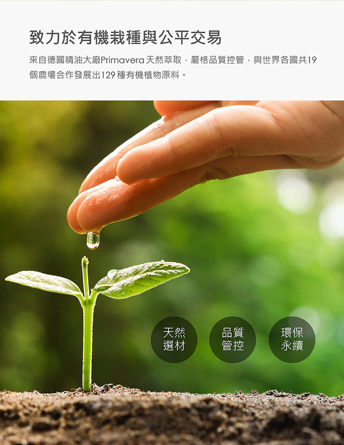 SERENE HOUSE|香氛膠囊蠟 -  薄荷森林  Peppermint Forest