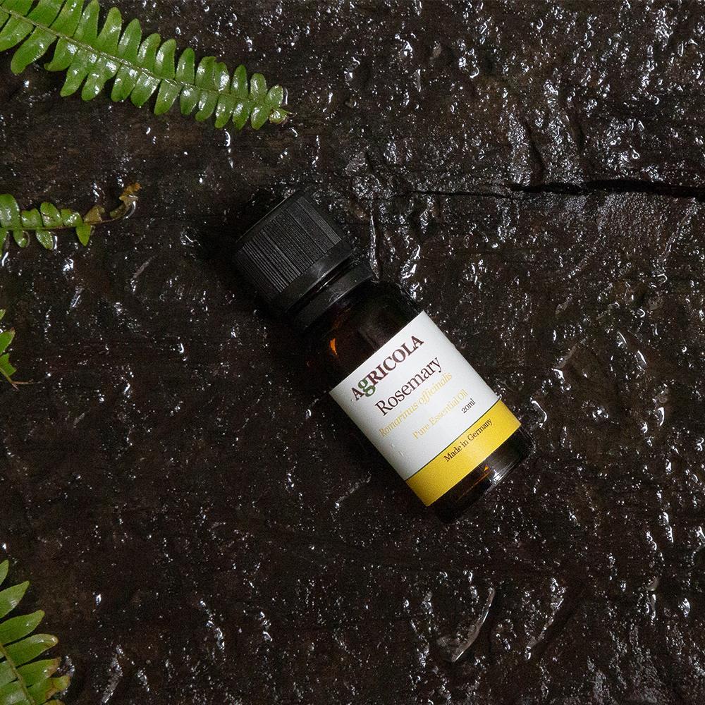 Agricola植物者|迷迭香精油 (20ml)