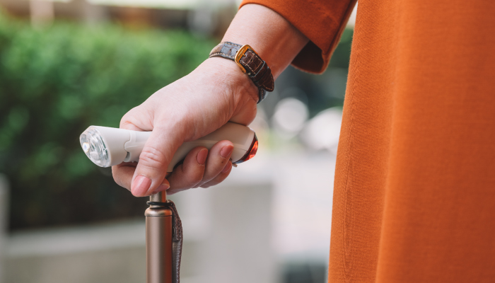 海鷗經典手杖(金白)配件組合