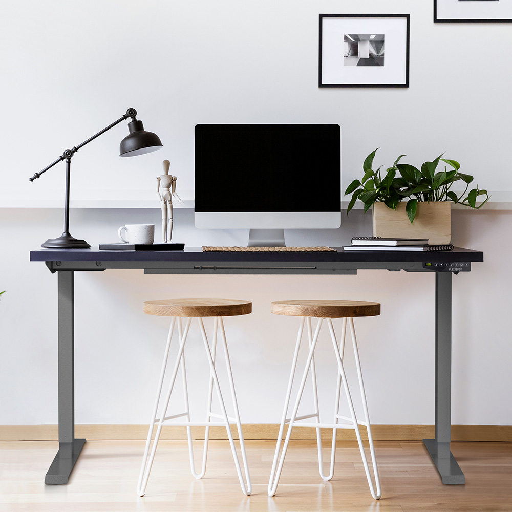 Flexispot 二節式電動升降桌