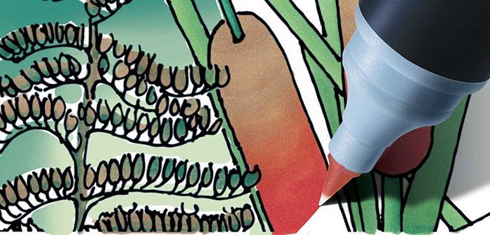 (複製)CHameLeon變色龍|漸層麥克筆5色組 花色