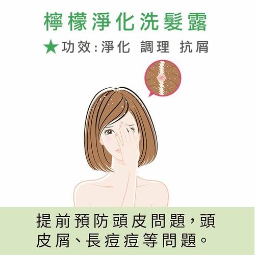 LeMood|精萃檸檬淨化 洗髮露 (淨化抗屑系列) - 300 ml