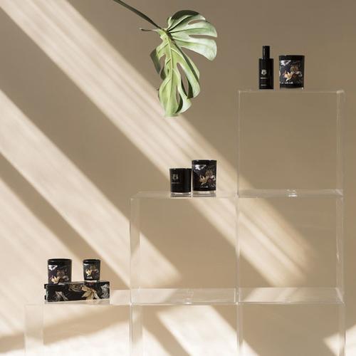 VICTORIAN|Wilderness 香氛蠟燭與噴霧禮盒組