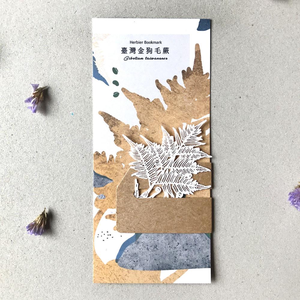 FERN ONLY 蕨類標本紙雕-臺灣金狗毛蕨