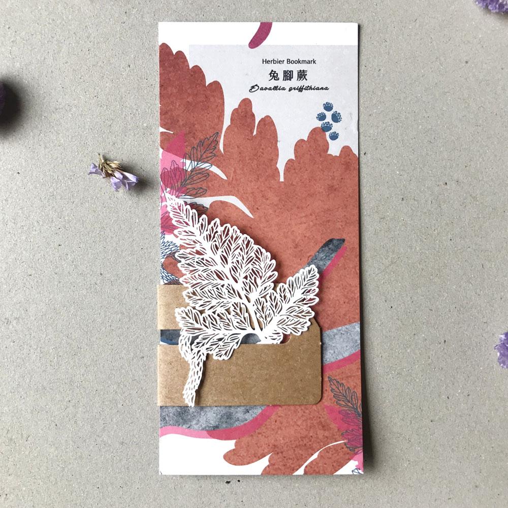 FERN ONLY 蕨類標本紙雕-兔腳蕨