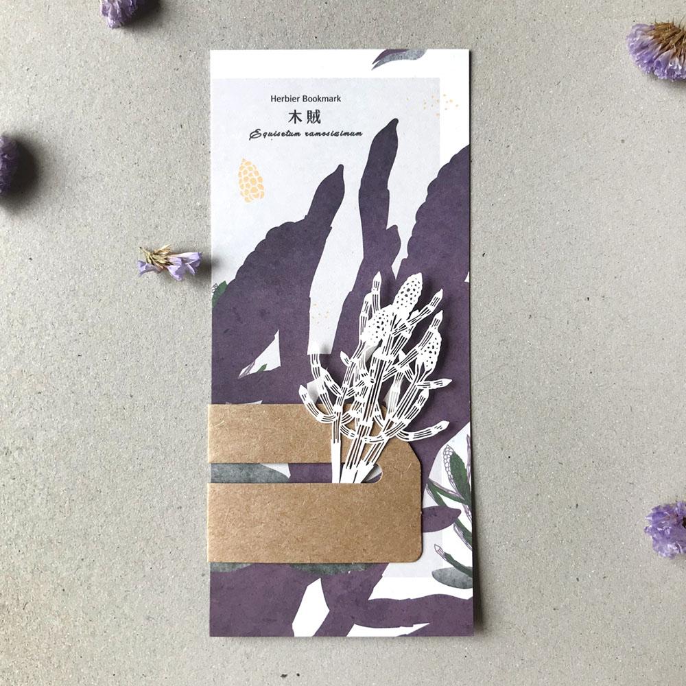 FERN ONLY 蕨類標本紙雕-木賊