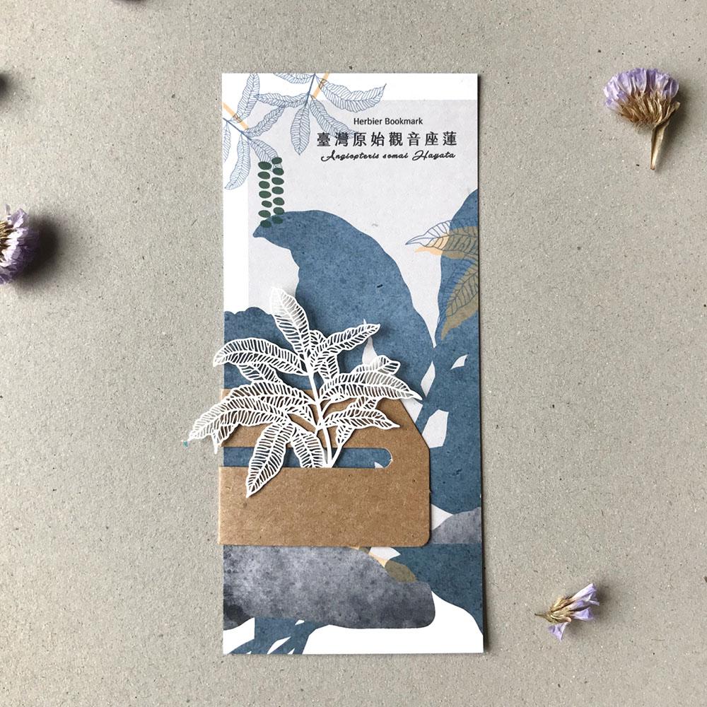 FERN ONLY|蕨類標本紙雕-臺灣原始觀音座蓮