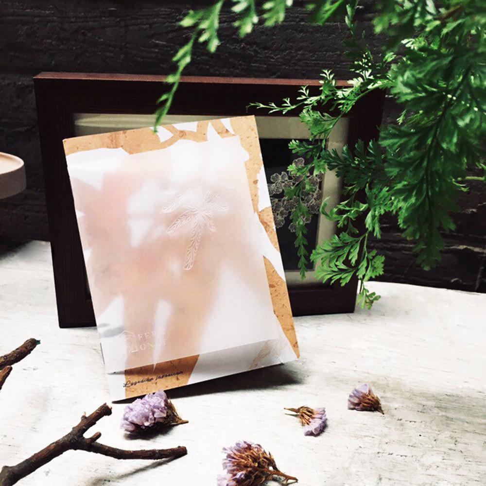 FERN ONLY|蕨美筆記本-海金沙